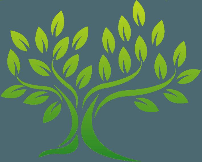 Sky Line Tree Surgery